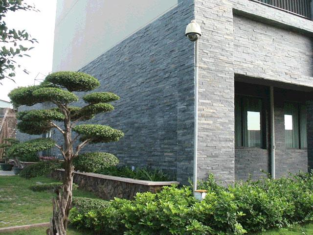 奢华装修艺术之背景墙